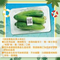 (6/1起陸續出貨)【田蜜心果園】4盒溫室無毒水果小黃瓜